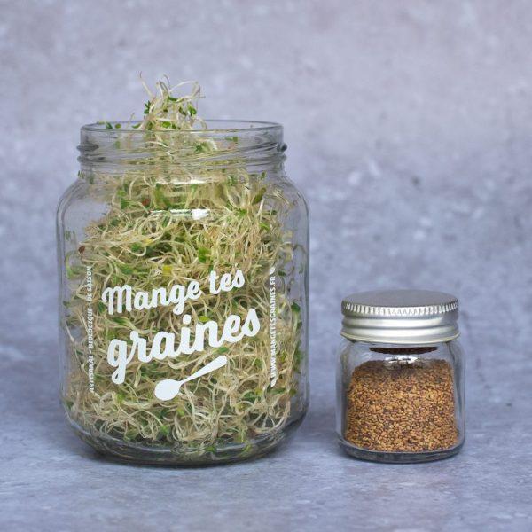 Kit graines à germer